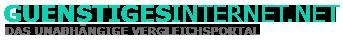 Günstiges Internet Logo